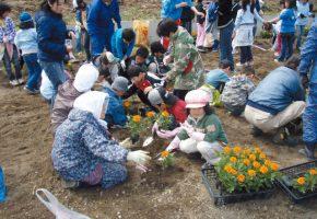 No.36「花の植栽を通じて子供からおばあちゃんまでの交流促進」上十川地区環境を守る会(黒石市)