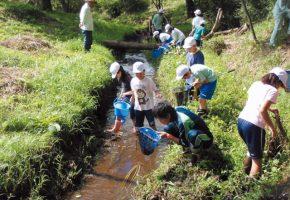 No.42「活動組織が自力整備した赤川排水路での生き物調査」赤川地区資源保全隊(八戸市)