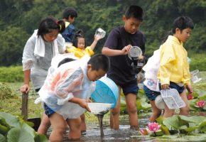 No.44「蓮を植栽している池での生き物調査」田代地区ふるさと資源保全会(階上町)