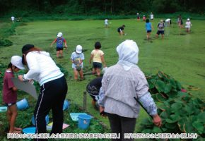 No.45「地域の小学校と連携した生態系調査(遊休農用地の活用)」田代地区ふるさと資源保全会(階上町)