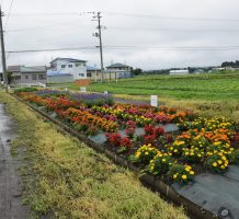 赤沼農地・水・環境保全会(十和田市)②